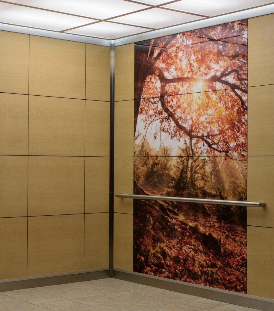 3D asansör dekorasyon